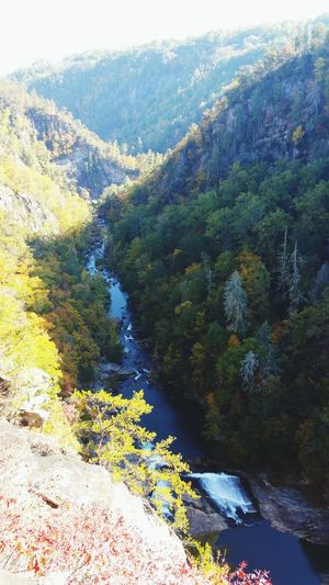Nature Green Color Beauty In Nature Outdoors Tallulah Gorge Water
