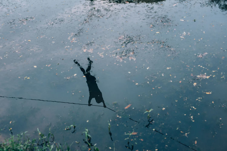 High Angle View Of Person Reflecting On Lake
