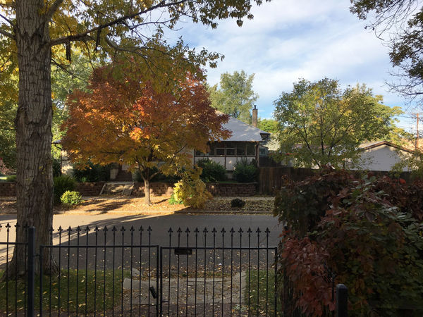 Fall Beauty Fall Colors Architecture Autumn Fall Fall Leaves No People Tree