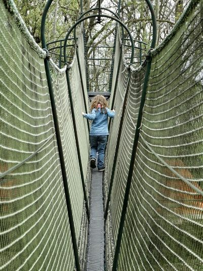 Rear view of girl walking on rope bridge