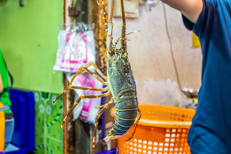 Midsection of man holding fish for sale in market