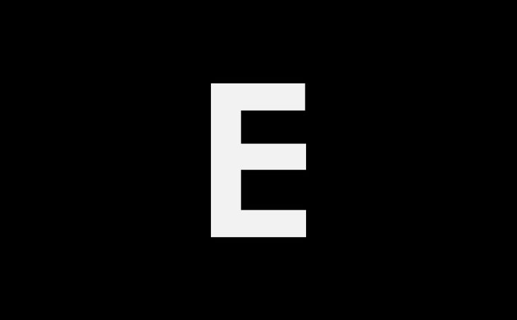 Happy couple looking away while standing on mountain during sunny day