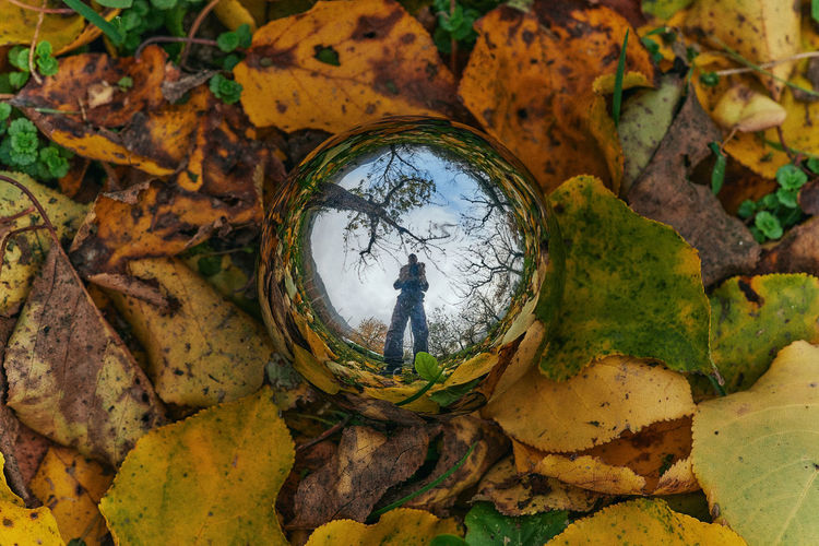 Digital composite image of man standing by tree during autumn