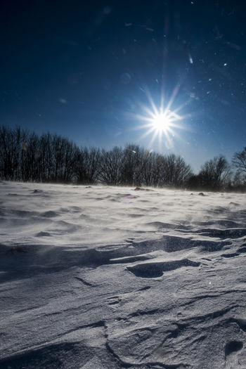 Snowstorm Storm Bare Tree Beauty In Nature Clear Sky Cold Cold Temperature Frozen Ice Landscape Lens Flare Moon Nature No People Outdoors Scenics Sky Snow Sun Sunlight Tranquil Scene Tranquility Tree Windy Winter