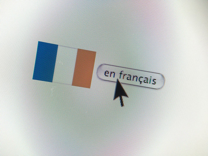 Arrow Button Clicking Close-up Computer Computer Screen Cursor French French Flag French Language Internet Mouse Arrow Pixel Screen Web Button Webpage