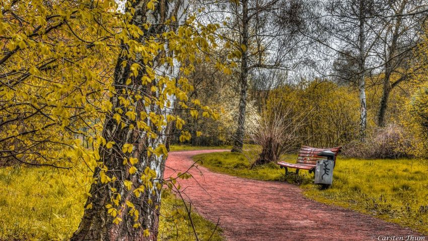 HDR Hdr_Collection Hdr Edit Autumn Canon EOS 700D 1/10 Sek. / f 14 ISO 100 18-200mm Tele https://www.facebook.com/CarstenTFotografie