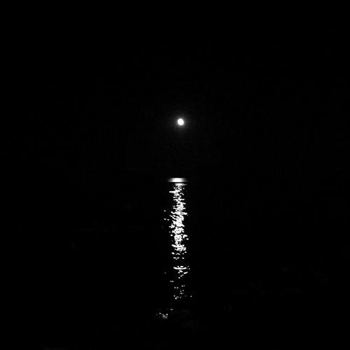 Scenic shot of moon in the dark