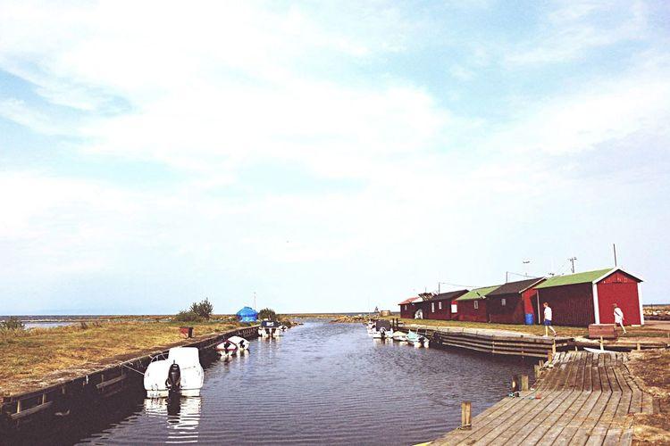 Summer Fishing Island
