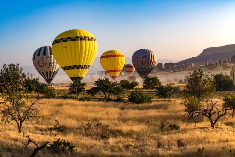 Beauty In Nature Blue Cappadocia Cappadocia Ballon Cappadocia Hot Air Ballons Cappadocia 🌺 🌺 Cappadocia/Turkey Cappadociafanpage Cappadocian Cappadociasunrise Cappadociaturkey Clear Sky Day Grass Green Color Hot Air Balloon Landscape Nature No People Outdoors Plant Sky Tree Yellow