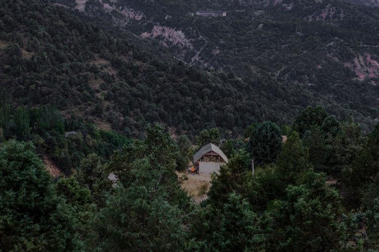 Chimgan mountains, summer