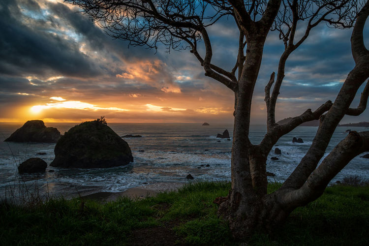 Sunset near Trinidad, California. Water Sky Sunset Cloud - Sky Scenics - Nature Tranquility Beauty In Nature Tranquil Scene Sea Land Beach Nature Plant No People Horizon Over Water Horizon Rock Landscape_Collection Seascape Photography Seascape View Nobody