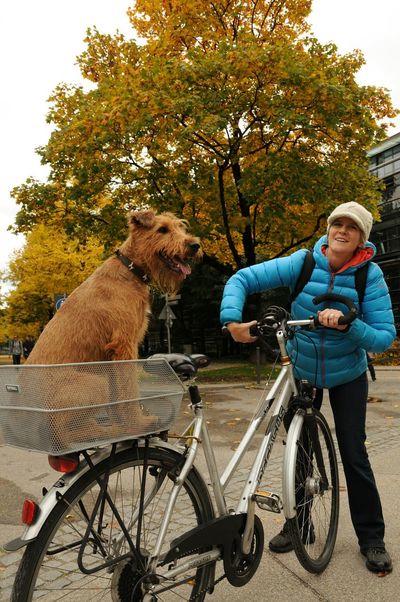 以前ドイツに行った時の写真。秋になったら載せるつもりでいました。Snap Photo Trip Photo City Life Dogslife Dog Germany Autumn Bysicle Eyem Best Shots