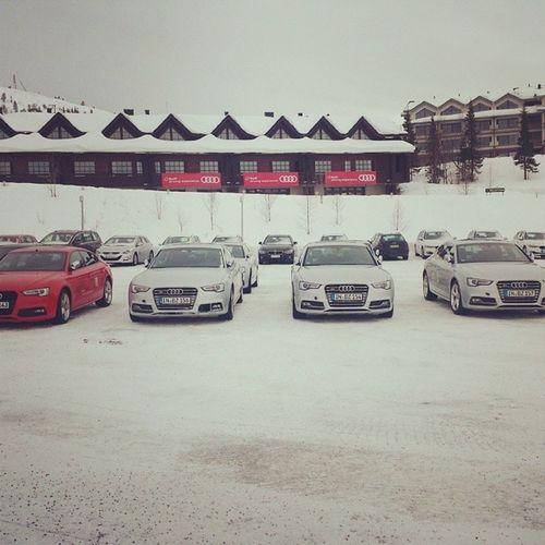 Audi Drivingexperience👍