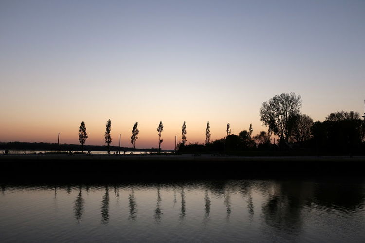 Silhouette trees by lake against clear sky during sunset
