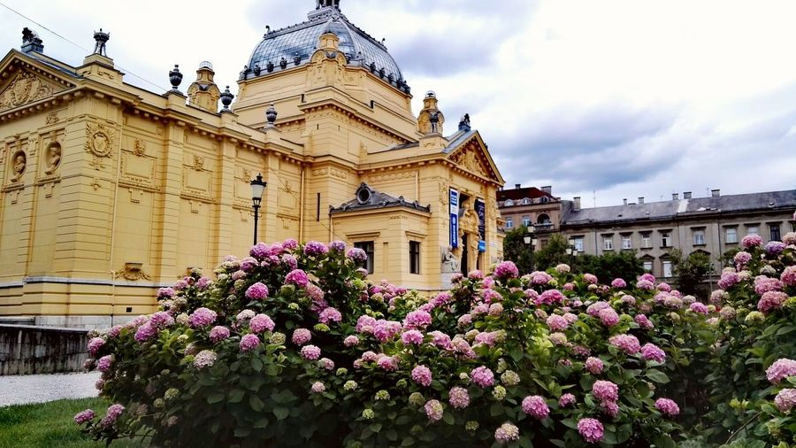 Gotta love Zagreb. Architecture Museum Flower Built Structure Outdoors History Building Exterior Travel Destinations Plant Sky Cloud - Sky Day No People Nature Multi Colored Fragility Flowers Roses Rose - Flower Colors EyeEm Best Shots - Nature EyeEm Nature Lover Clouds And Sky City City Life The Great Outdoors - 2017 EyeEm Awards The Architect - 2017 EyeEm Awards