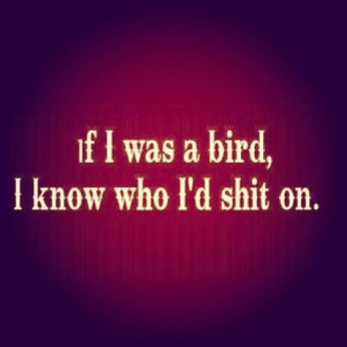 если бы я был птицейязнаюнакогонасралбы
