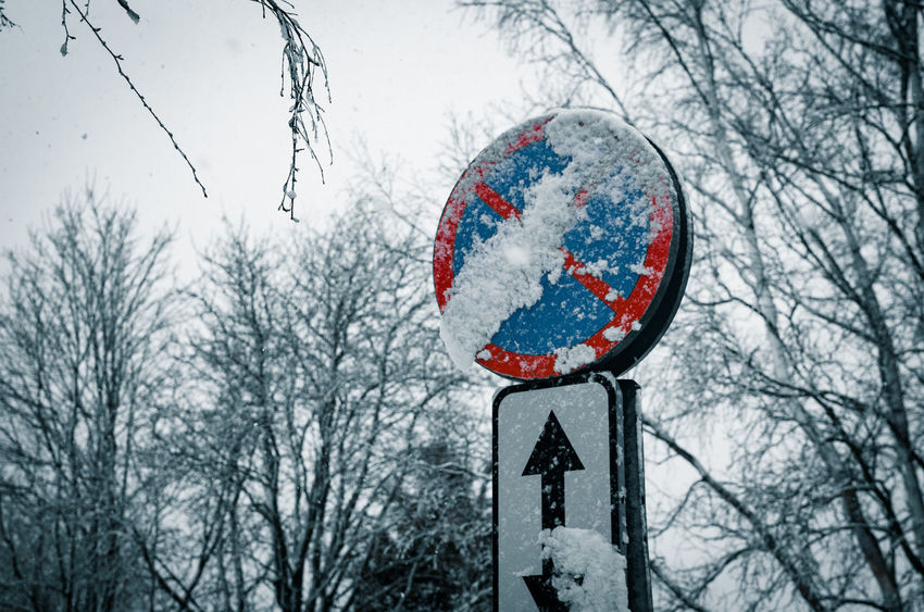 No parking road sign covered in snow Blue Color Cold Temperature Covered In Snow Daytime Low Angle View Nature No Parking No Parking Sign No People Outdoors Road Sign Sign Snow Snowflakes Snowy Trees Weather Winter