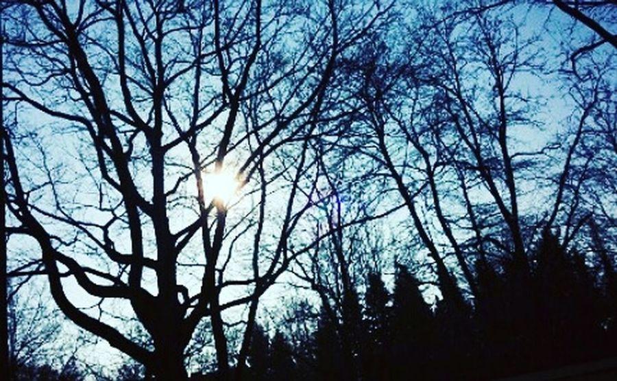 Wonderful Day Nature Sun Hamburg Hamburgmeineperle