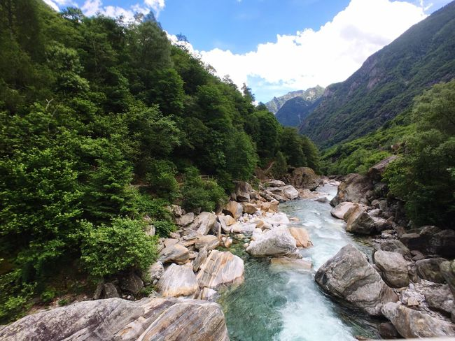 Nature River Beauty In Nature Scenics Mountain Tree Tranquil Scene Water Day Tranquility Landscape Waterfall No People Outdoors Sky Motion Forest Switzerland Nature Jenae