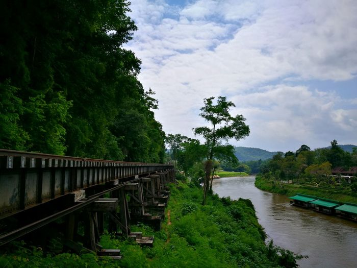 Railing Bridge - Man Made Structure Outdoors Tree Sky No People Beauty In Nature Water Nature Tree Trees Riverside Riverscape River View Forest Cloudy Sky Cloud Formations Railroad Track Railroad River Landscape Travel Destinations Tranquility