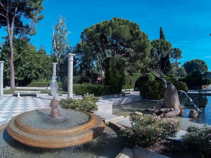 Magic garden,