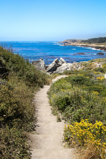 Sandy steps Landscapes Nature Blue Green Exploring California Enjoying Life Hot Weather Water Sea Beach Sand Clear Sky Sky Horizon Over Water Seascape Coast Coastline Low Tide Rocky Coastline Marram Grass Shore Coastal Feature Calm Countryside Wave Surf Tide Ocean Seashore