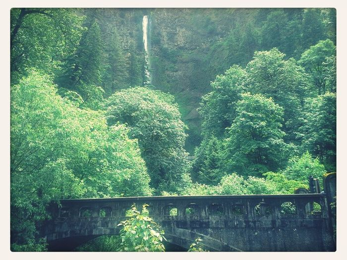 EyeEm Best Shots Bridges Eye4photography  Beautiful Surroundings Beautiful Waterfall