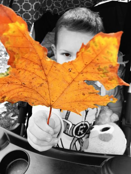 Fall Leaf Child