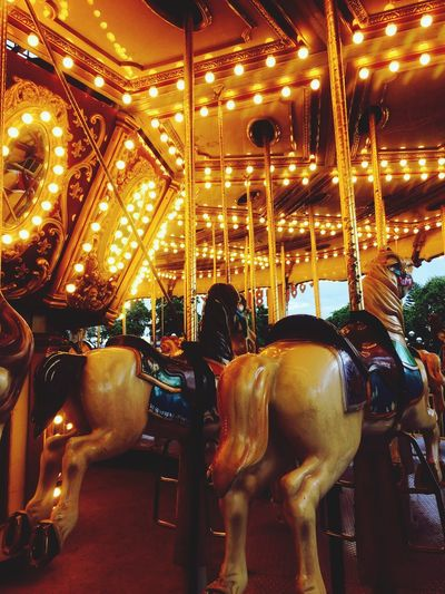 43 Golden Moments trapped in a carousel 💛💛💛 Fine Art Photography