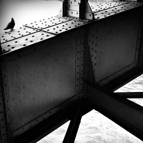 Ratten Der Lüfte Steel Architectural Detail