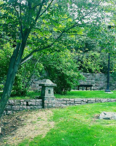 Seeing The Sights Japanese Garden Enjoying Life Beautiful Place Outdoor Photography Taking Photos Hidden Gems