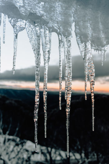 Close-up of icicles hanging in frozen water