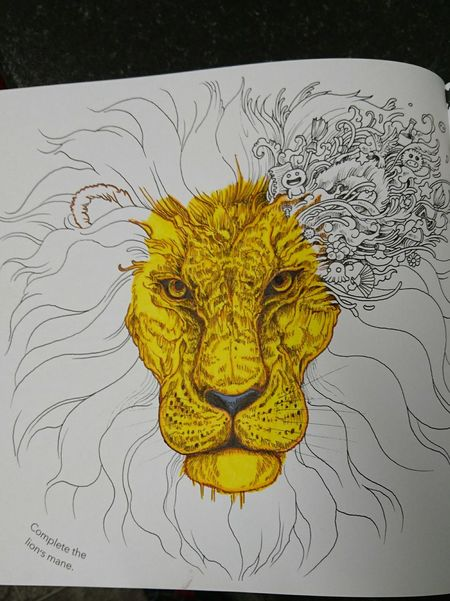New Hobby Colour Me In Half Way There.. Colouringbookforadults