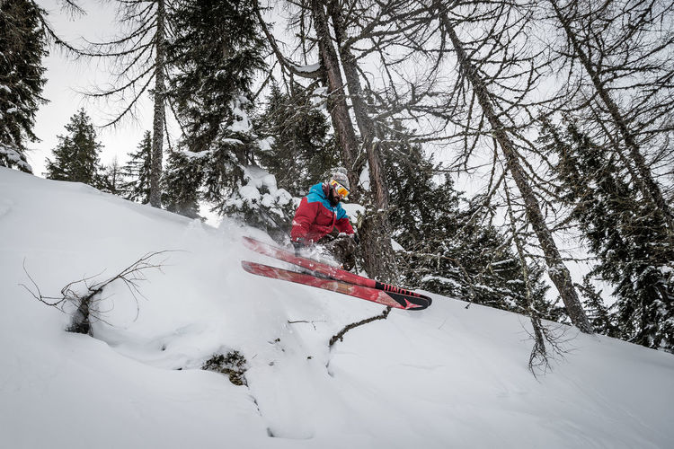 Snow Winter Tree Cold Temperature Leisure Activity Real People Sport One Person Lifestyles Plant Winter Sport Adventure Vacations Full Length Motion Holiday Trip Extreme Sports Mountain Warm Clothing Skill  Outdoors Ski-wear