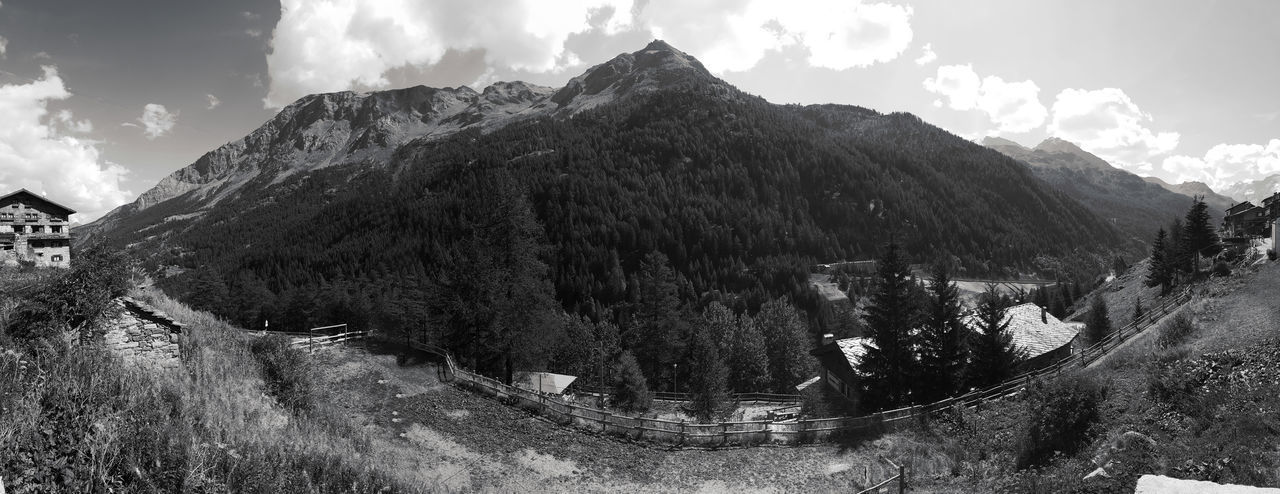 Mountain Cloud - Sky Nature Outdoors Landscape Forest Growth Alps Courmayeur Amazed The Great Outdoors - 2017 EyeEm Awards EyeEmNewHere Your Ticket To Europe Connected By Travel Perspectives On Nature Black And White Friday Go Higher