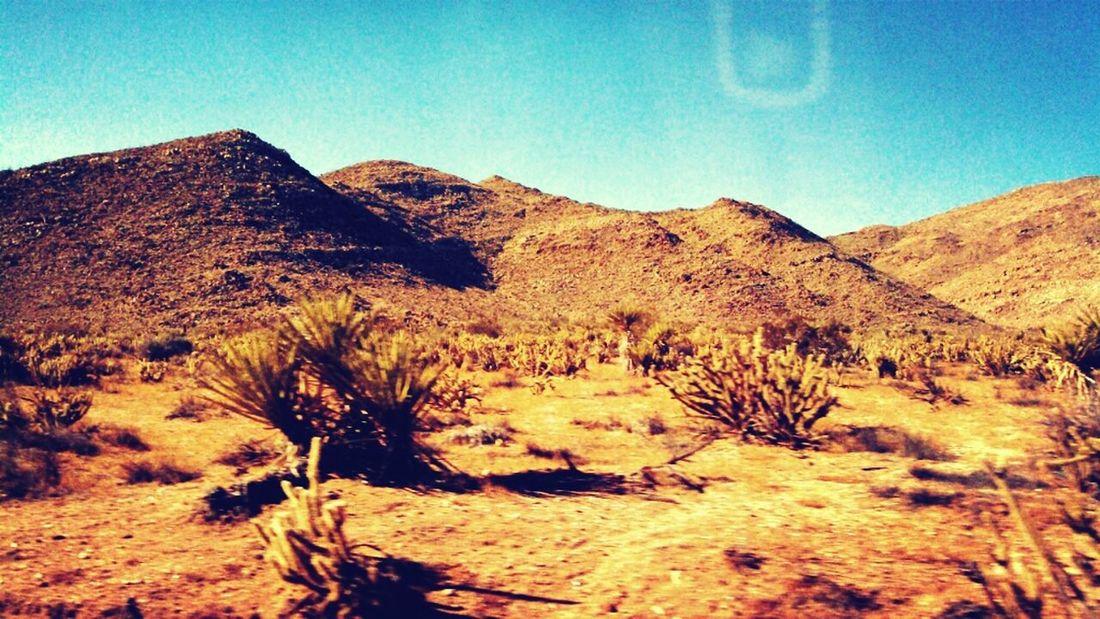 Desert Dry Heat,  Sunny Day