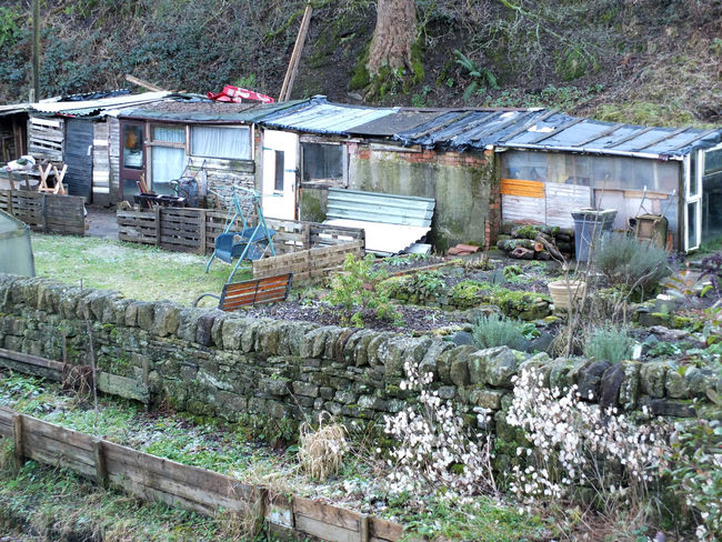 typical british allotments with improvised sheds Gardening Growing Sheds Allotment Permaculture Shed Smallholding Vegetables