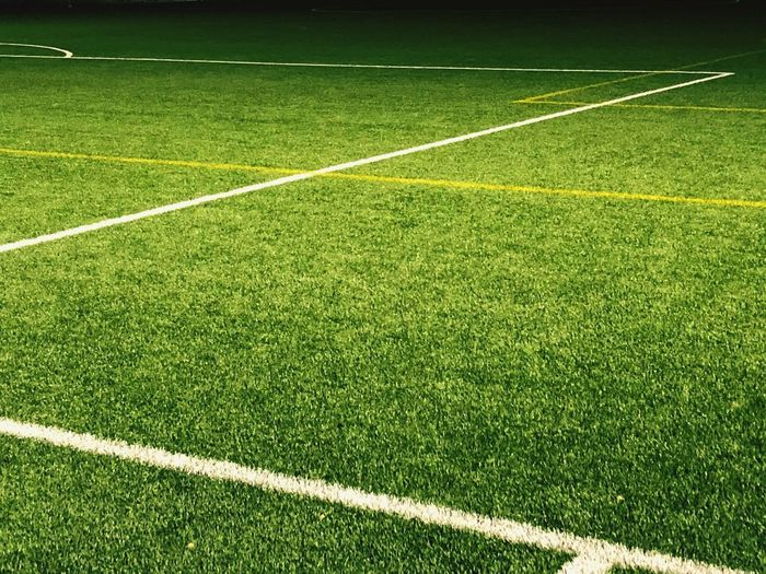 Line#1 Grass Soccer Sport Playing Field Soccer Field Green Color Plant First Eyeem Photo