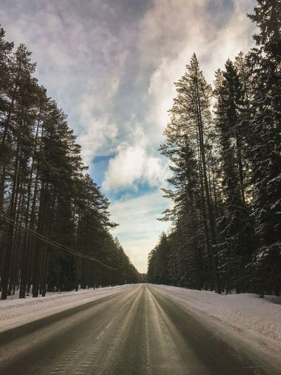 Travel Snow Covered Snow Winter Nature Driving Finland ShotOnIphone The Way Forward Tree Plant Sky Road Cloud - Sky The Way Forward Direction Tranquility Empty Road Day Growth Tranquil Scene Land No People vanishing point Beauty In Nature Diminishing Perspective Nature Transportation Outdoors