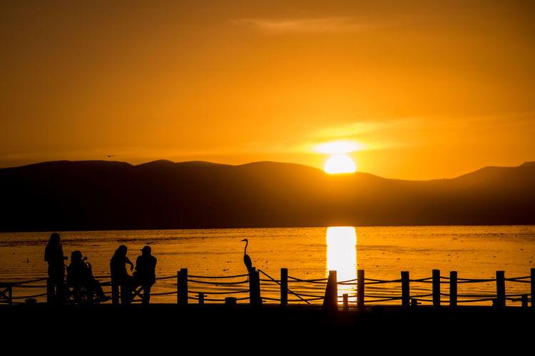 Jalisco Chapa Idyllic Lake Orange Color Outdoors People Silhouette Sky Sun Sunset Tranquil Scene Water