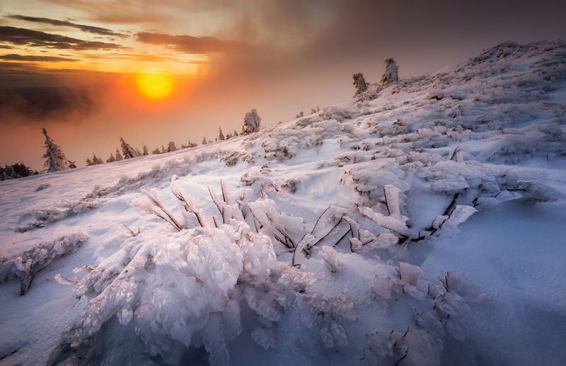 Snow covered landscape against sky during sunset in vladeasa mountains
