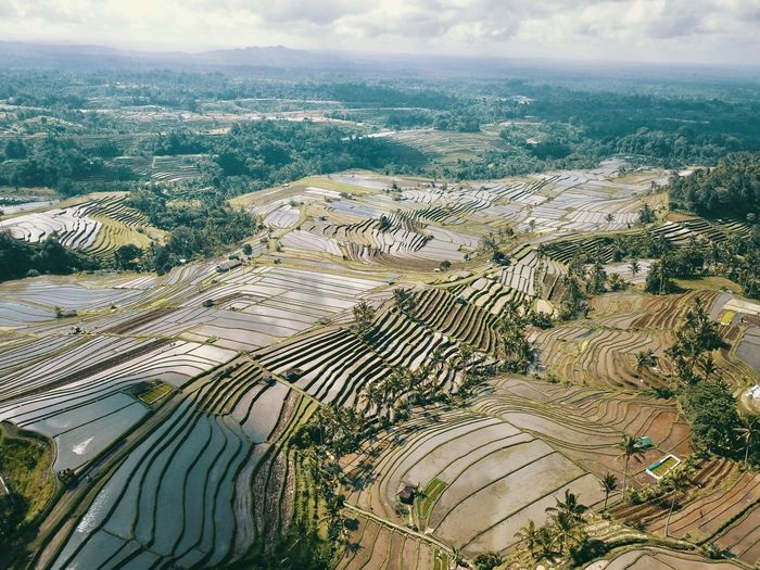High angle view of agricultural field against sky