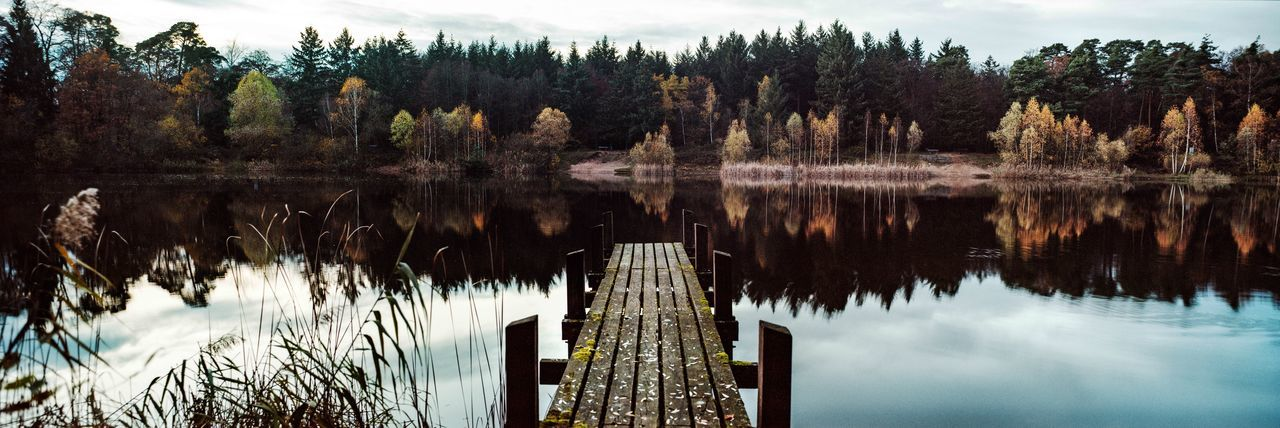 Analog Analogue Photography Autumn Baden-Württemberg  Forest Forest Lake Germany Herbst Herbstfarben Lake Lake And Trees Lake In The Forest Landscape Natur Nature Nature Photography Panaroma Photography Panorama Panorama Shot. Panorama View Photography Runway See View Waldsee