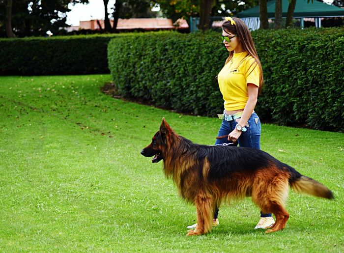 Young Woman With Dog Walking On Grassy Field At Park