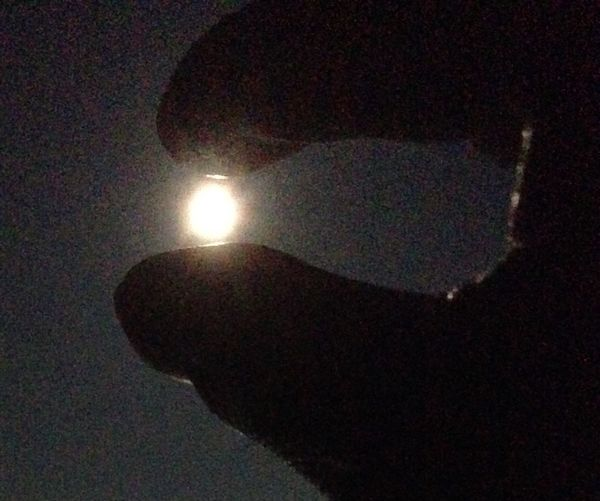 中秋の名月をつまんでみました‼️ Moon Full Moon Beautiful Moon  EyeEm Moon Shots Moon Light