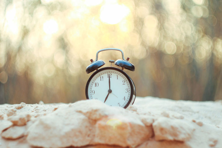 Alarm Clock Clock Time Selective Focus Close-up Nature Day No People Number Focus On Foreground Sunlight Lens Flare Morning Outdoors Table Tree Bed Single Object Accuracy Defocused Clock Face