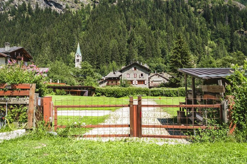 Gressoney Saint Jean Nature Porn Adult Italy Aosta Valley Gressoney Alps Europe Summer Green Trees Typical Colorful Outdoors Travel EyeEm Best Shots Travel Destinations Tree Grass Architecture Built Structure Building Exterior Green Color Gate Entrance Fence Traditional Building Closed Door Entryway My Best Photo