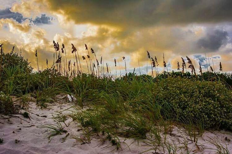 Sunset Cloud - Sky Nature Outdoors