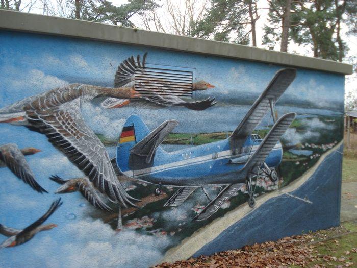Antonow Doppeldecker Flughafen Herngsdorf Gemälde Kunst Im öffentlichen Raum  Usedom Ostsee Wildgänse Airport Art Bird No People Outdoors Paintings On The Wall