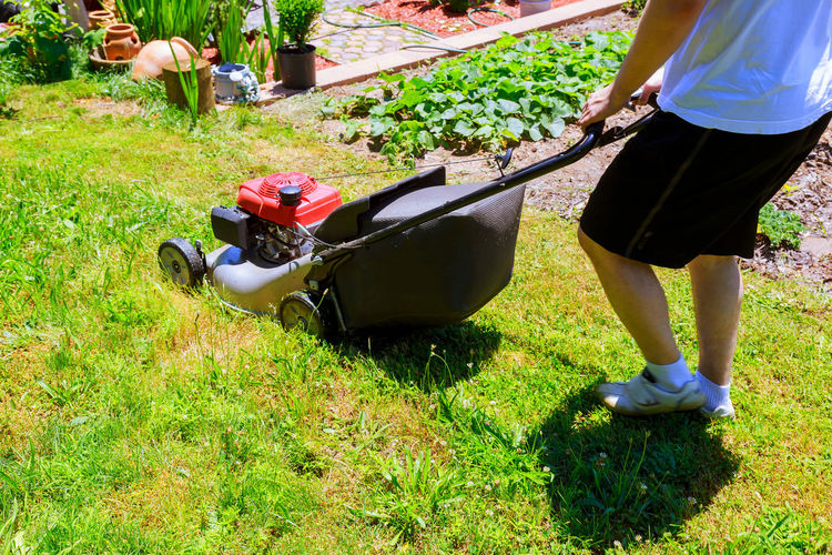Low section of man mowing in lawn during sunny day